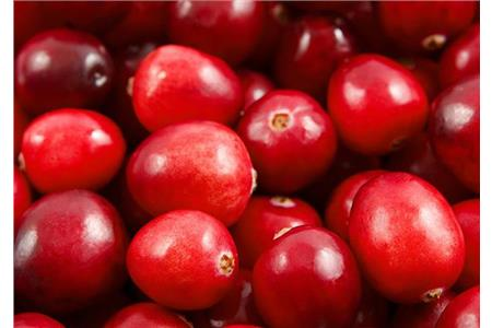 Cranberries - Not just for Christmas!