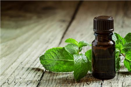 Peppermint oil capsules for IBS