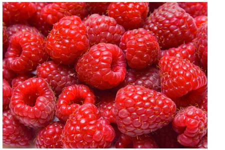 Raspberry Ketones are now a 'Novel Food'