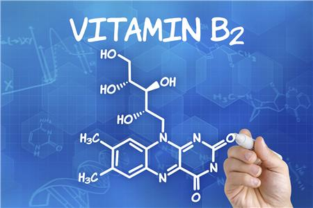 Vitamin B2- Deficiency Risk and Symptoms