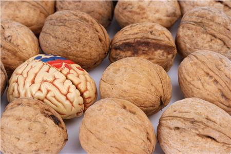 Walnuts - great for a healthy brain